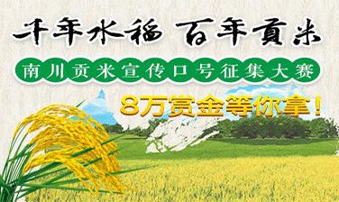 南川贡米宣传口号征集大赛